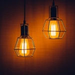 文鳥の夜の様子とは?電気を真っ暗にすると?