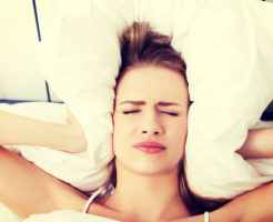 文鳥 音 敏感 ストレス