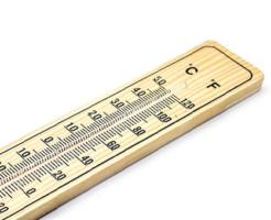 文鳥 ヒーター 時期 温度