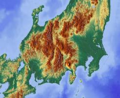 文鳥 野生 日本